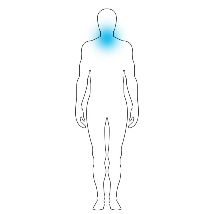 Rückenschmerzen - Oberer Rücken - 3K-Pads